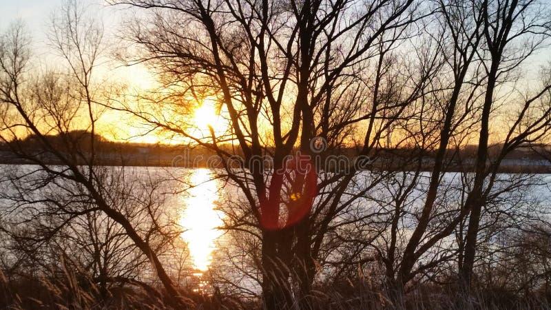 Sueño de enero del sol del invierno fotografía de archivo libre de regalías