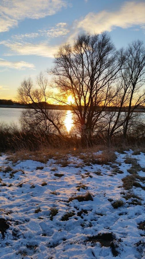 Sueño de enero del sol del invierno imágenes de archivo libres de regalías