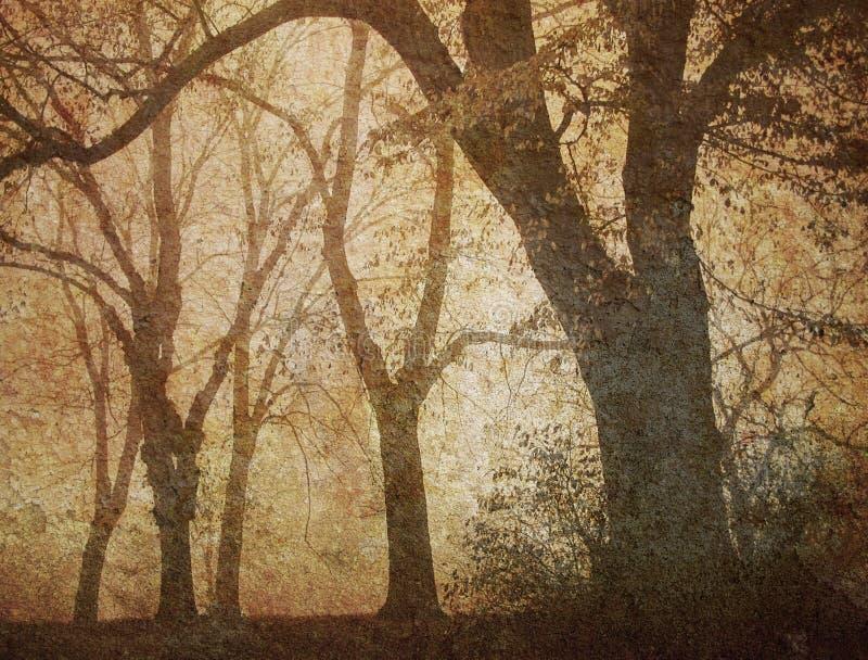 Sueño de un día brumoso imagenes de archivo