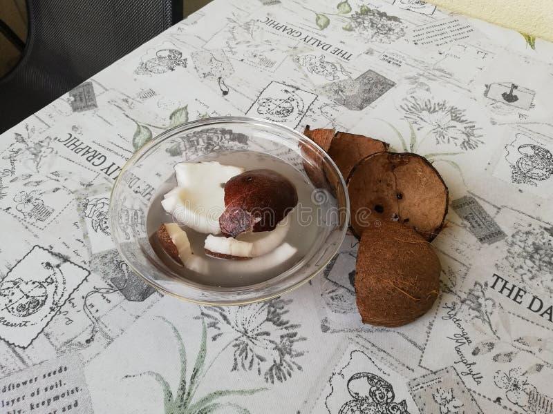 Sueños de la comida de los Cocos fotografía de archivo libre de regalías
