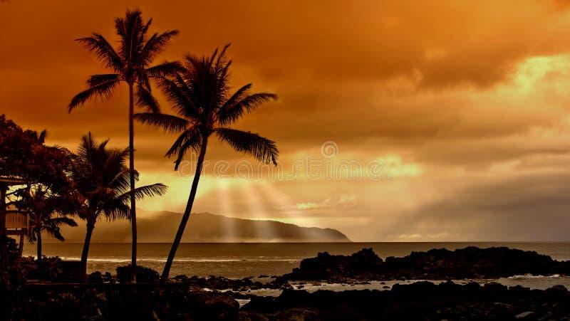 Sueños de la playa fotografía de archivo libre de regalías