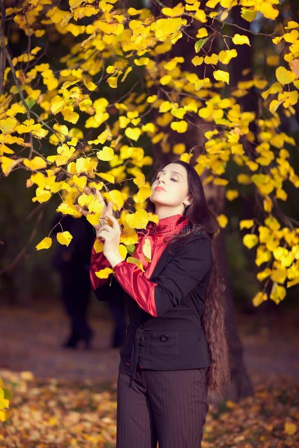 Sueños del otoño foto de archivo libre de regalías