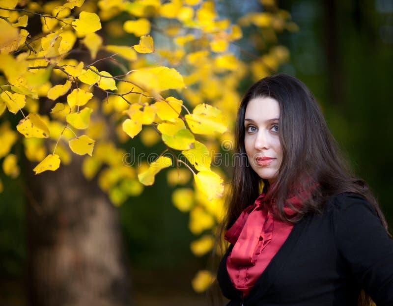 Sueños del otoño imagen de archivo libre de regalías