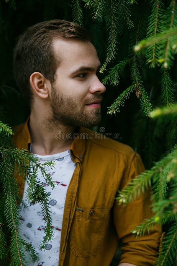 Sueños elegantes lindos jovenes del individuo en ramas verdes y enormes del abeto imagenes de archivo