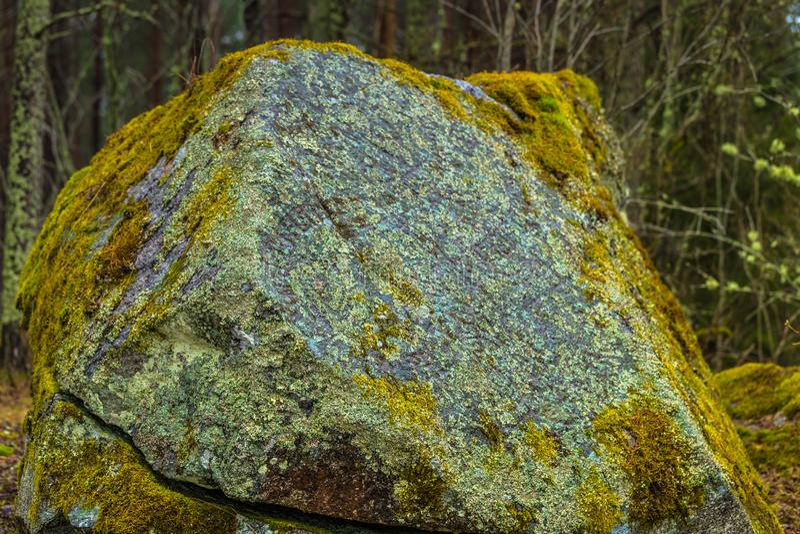 Suecia - 1 de abril de 2017: Runestone de Viking en el desierto del interruptor fotos de archivo libres de regalías