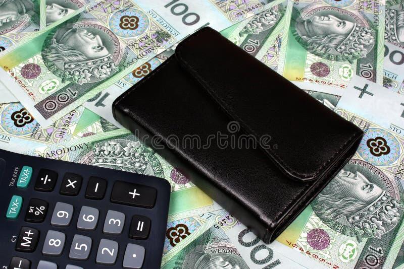 Sueldo polaco del dinero imagenes de archivo