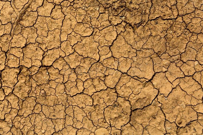Suelo agrietado marrón seco - textura de la tierra imágenes de archivo libres de regalías