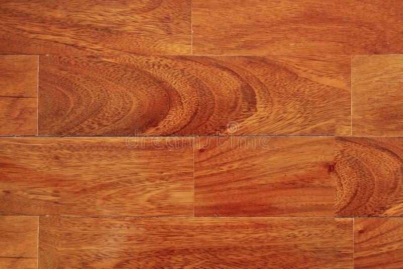Suelo de madera del entarimado con la capa clara brillante fotografía de archivo