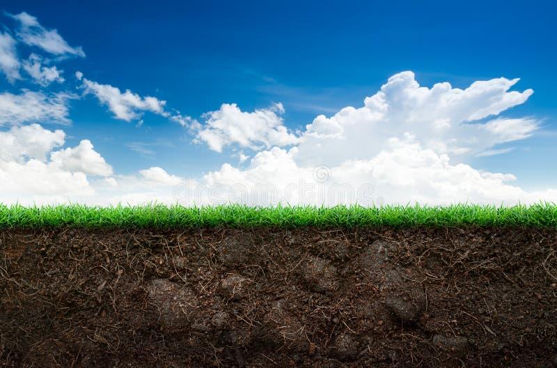 Suelo e hierba en cielo azul fotos de archivo