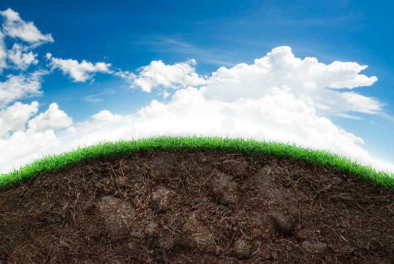 Suelo e hierba en cielo azul imagen de archivo libre de regalías