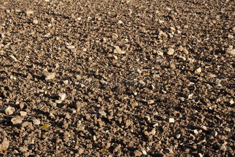 Suelo pedregoso imagen de archivo imagen de agr cola for Suelo pedregoso