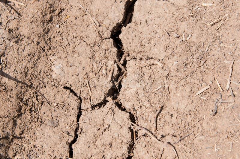 Suelo seco, agrietado en la primavera imagen de archivo