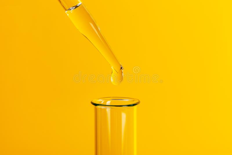Suelte la pipeta en el tubo de ensayo El estudio del material biológico Investigación en laboratorio Fondo amarillo foto de archivo libre de regalías