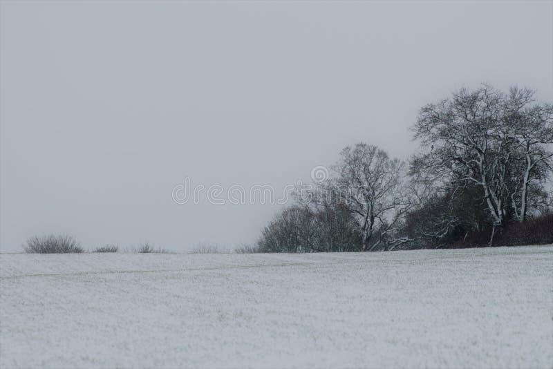 Suffolk de Shimpling en la nieve fotografía de archivo