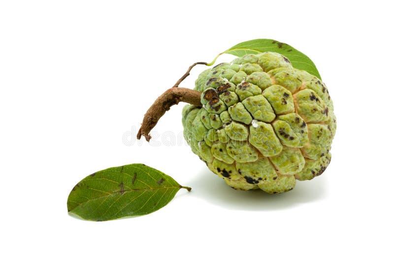 Download Sugar Apple (corossol, Annona, Pomme Cannelle) Photo stock - Image du pomme, organique: 56490468
