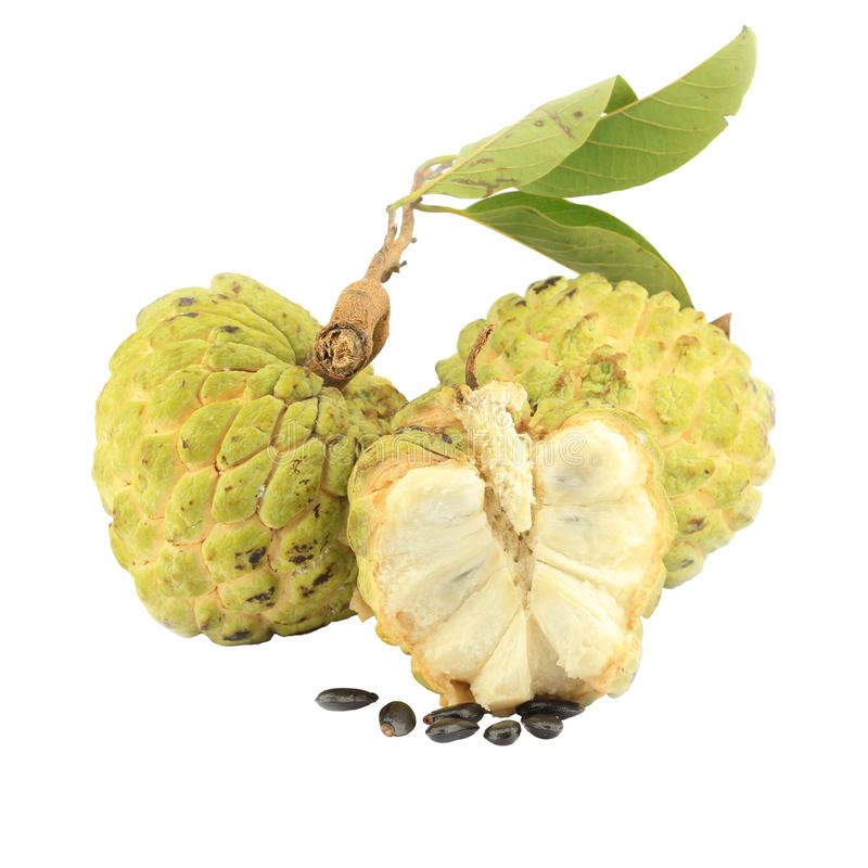 Sugar-apple with cross section stock photography