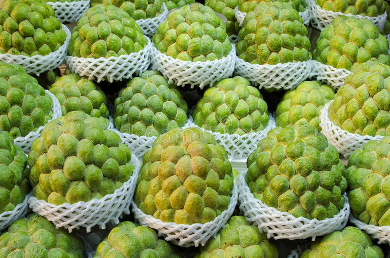 Sugar apple (Custard apple). For sale stock photography