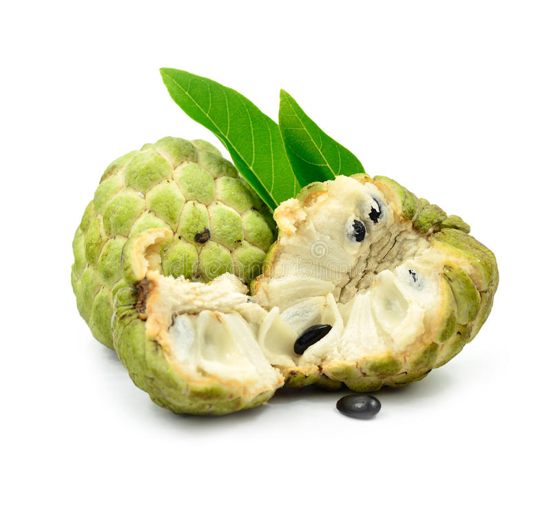 Sugar Apple fruit. Isolated of Sugar Apple fruit stock image