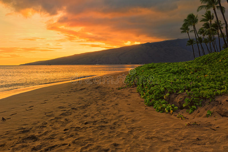 Sugar Beach Kihei Maui Hawaii EUA fotografia de stock