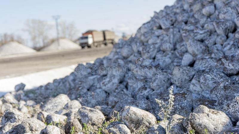 Sugar beet pile of the field after the harvest before processing at the plant for the production of sugar stock image