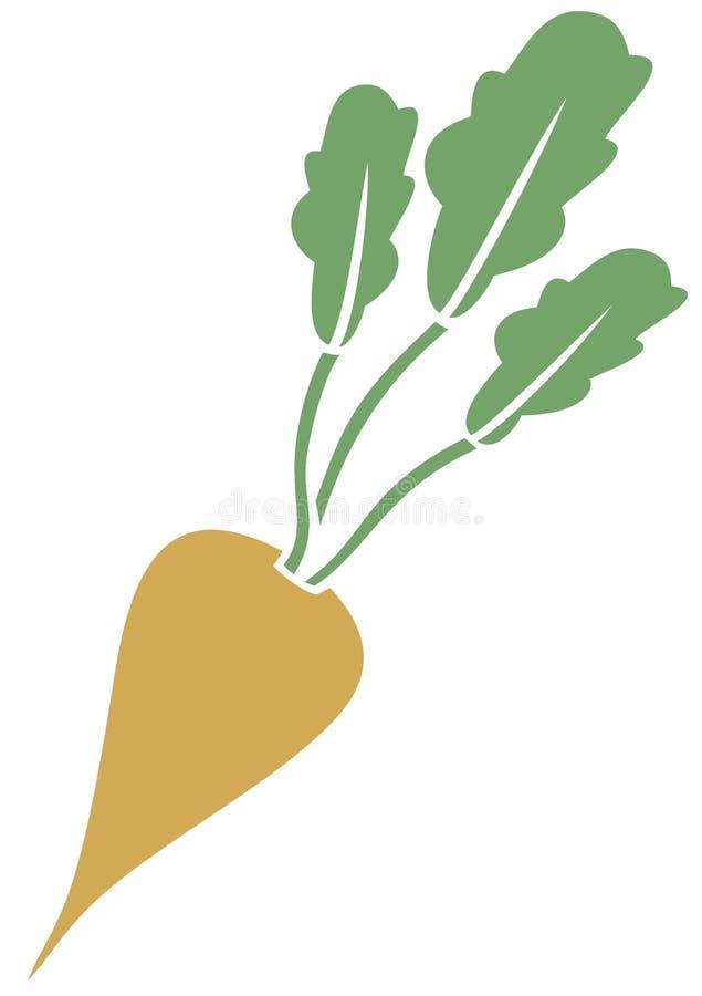 Sugar beet. Vector icon,  sign stock illustration