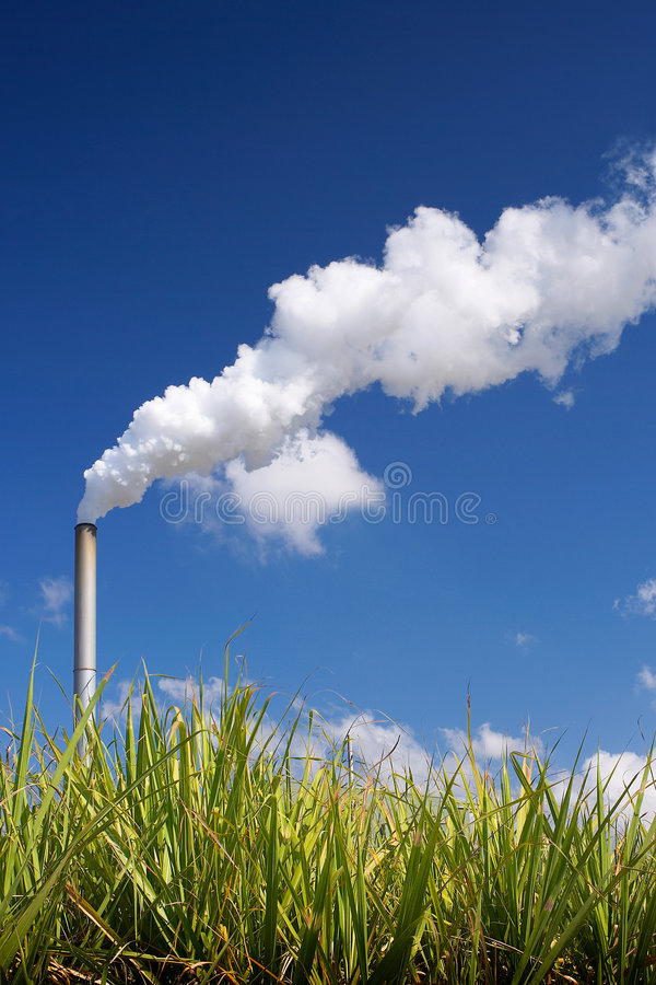 Free Sugar Cane Bio-fuel Factory Stock Photos - 8782993