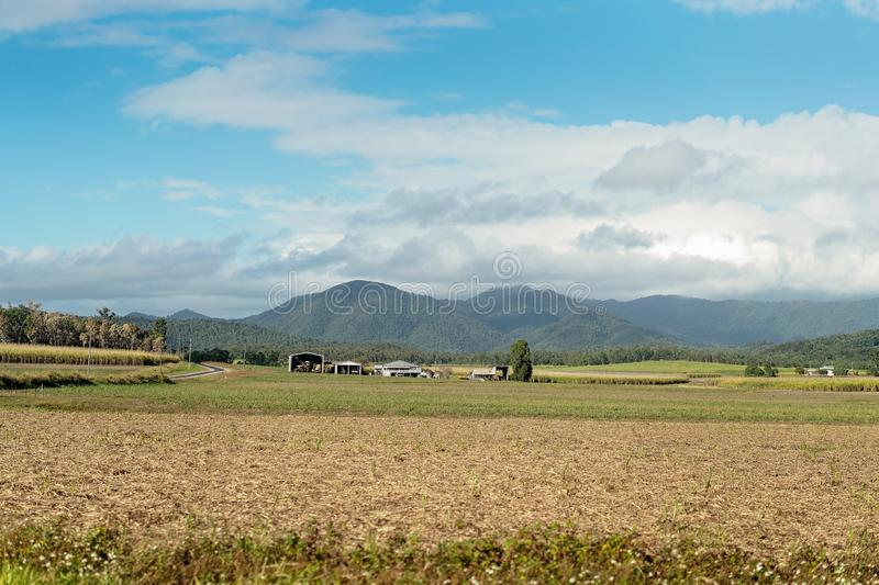 Sugar Cane Fields And Homestead In Country Australia. Typical homestead and sheds on a rural property farming sugar cane in Australia stock image