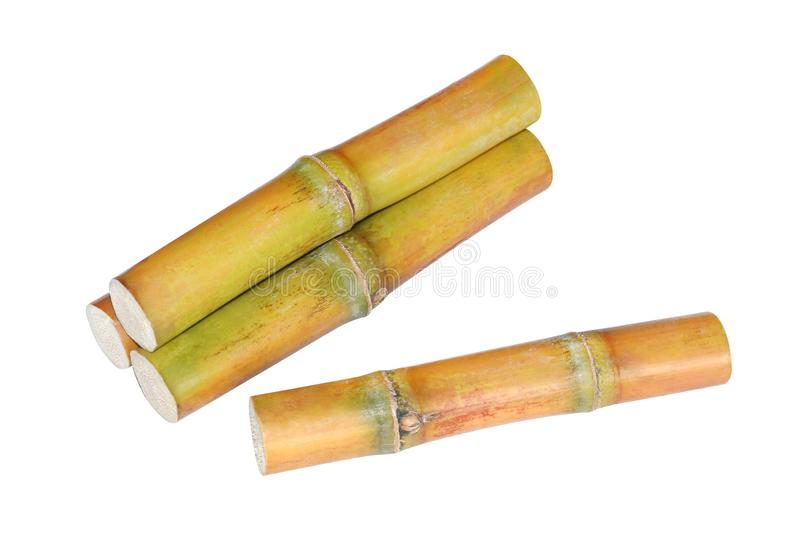 Sugar cane heap, Pile of Cane, Sugarcane piece fresh, Sugar cane on white background, Sugarcane fresh royalty free stock images