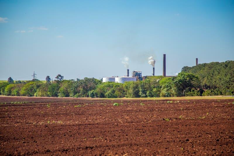 Sugar cane industry. Harvest brazil royalty free stock photos