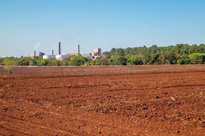 Sugar cane industry. Harvest brazil stock photo