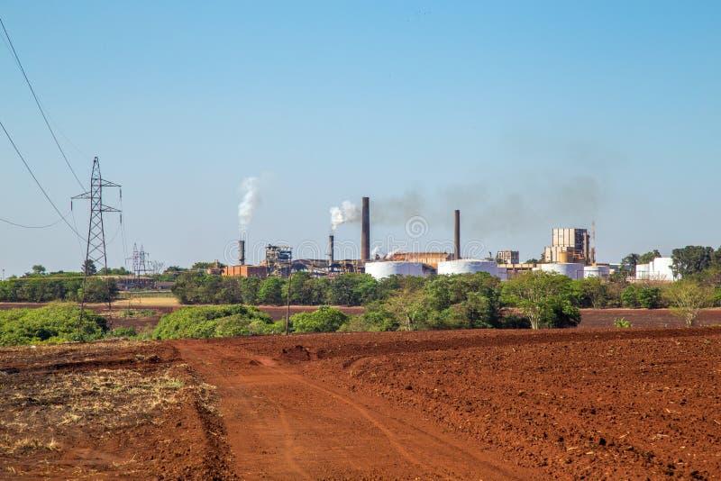Sugar cane industry. Harvest brazil royalty free stock photo