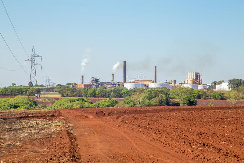 Sugar cane industry. Harvest brazil stock photography