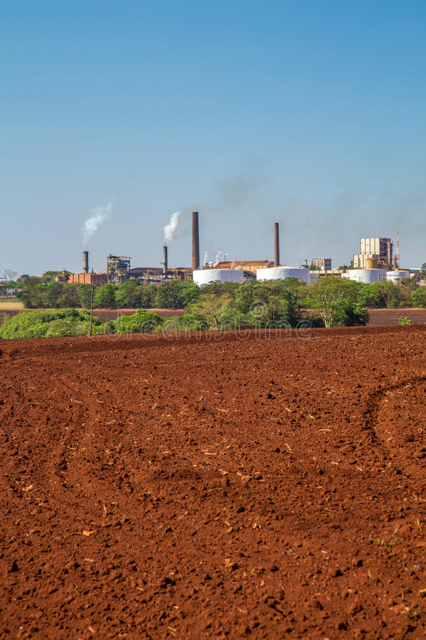 Sugar cane industry. Harvest brazil stock photos