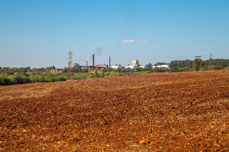 Sugar cane industry. Harvest brazil royalty free stock images