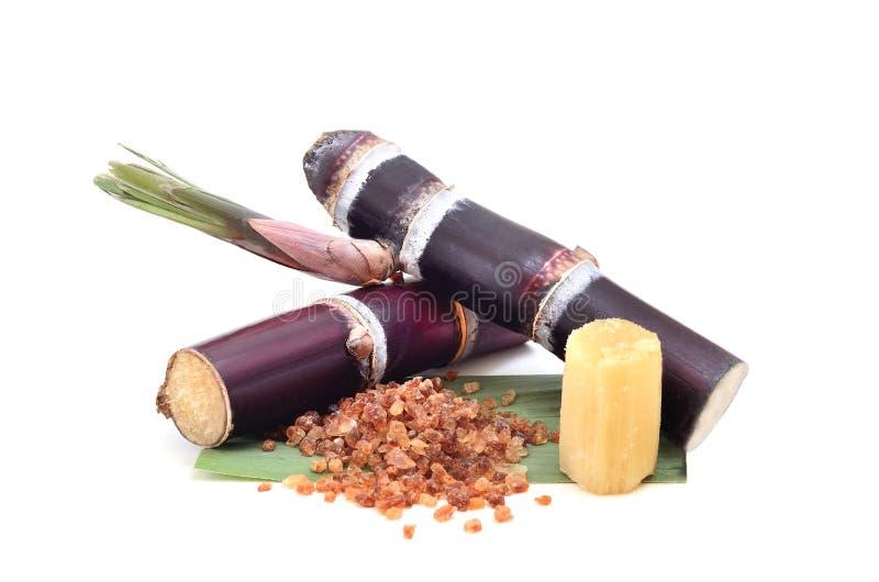 Sugar cane isolated on white background.  stock photo