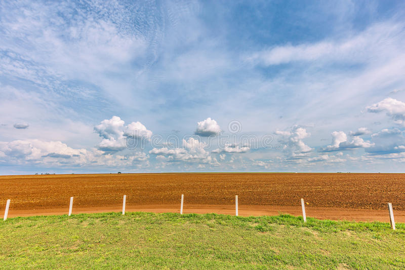 Sugar cane plantation and cloudy sky - Brazil coutryside. Sugar cane plantation and cloudy sky in Brazil coutryside royalty free stock image