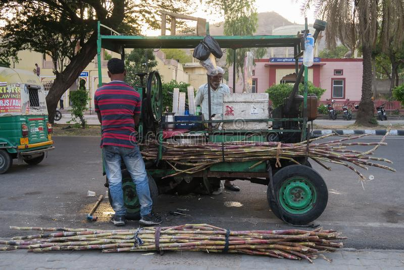 Sugar cane production royalty free stock photo