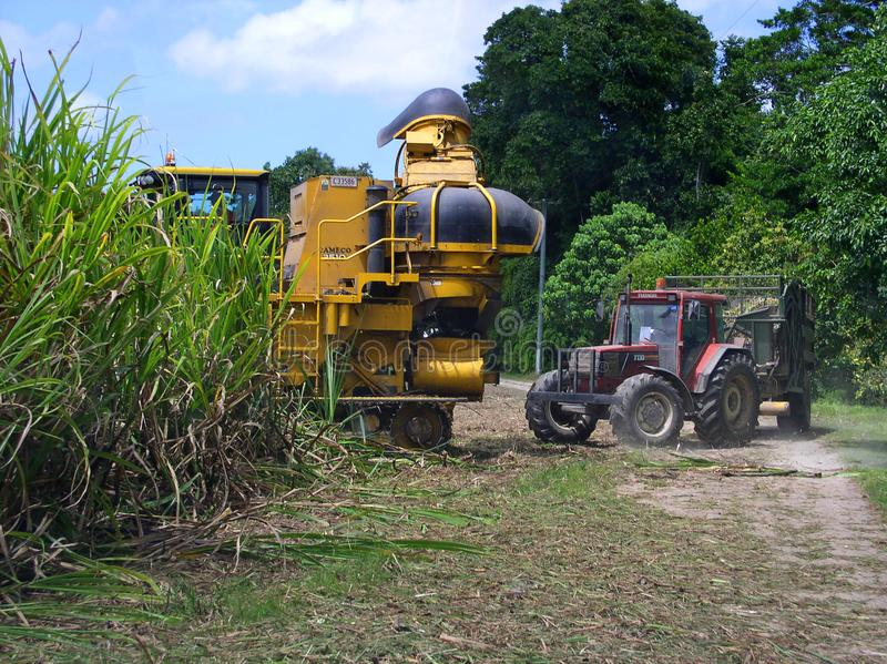 Sugar Industry Sugarcane Harvest Scene in Ingham Queensland Australia. Sugar Industry Sugarcane Harvest Scene, farm equipment, sugarcane, cane in Far North royalty free stock photo