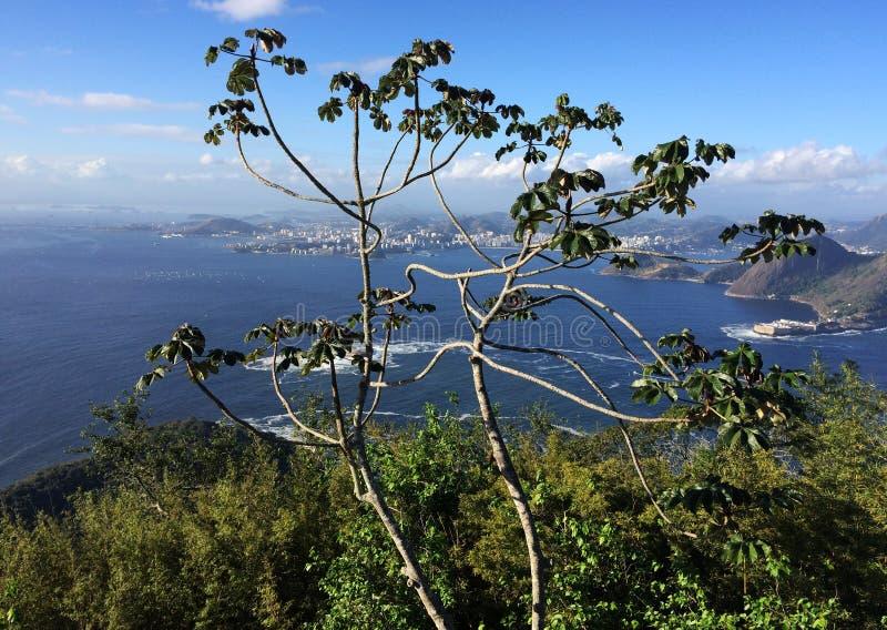 Sugar Loaf Mountain View ( Pão de Açúcar) , Rio de janeiro, Brasil imagens de stock