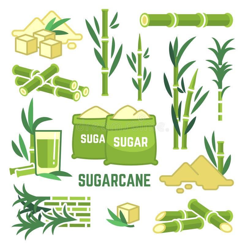 Sugar plant agricultural crops, cane leaf, sugarcane juice vector icons. Sugar cane, sweet plant, natural green stem illustration stock illustration