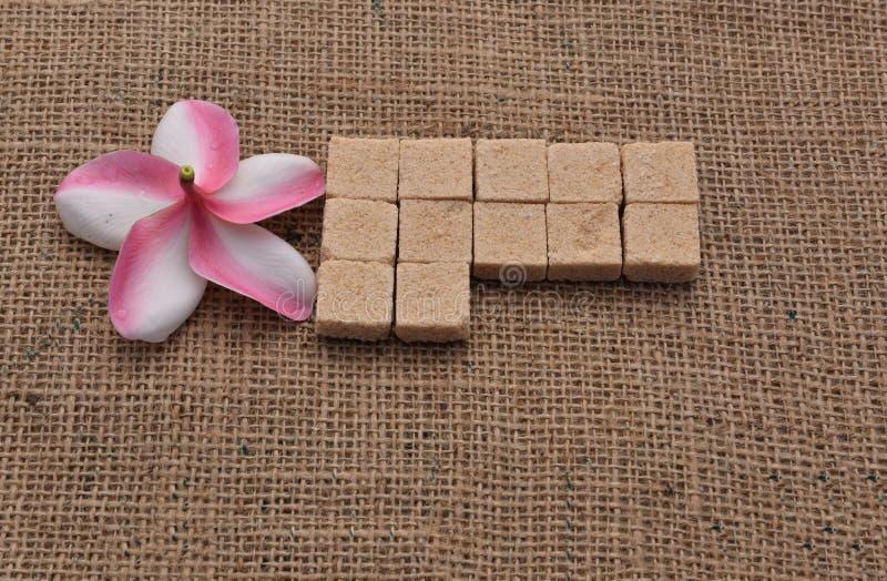 Sugar and Plumeria flower on hemp sackcloth background. royalty free stock image