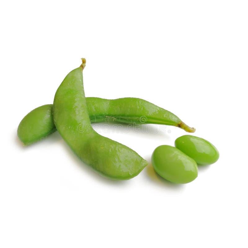 Sugar Snap Peas verde orgânico fotos de stock