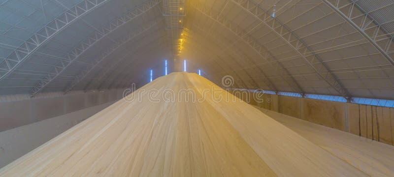 Sugar storange factory plant. Room factory deposit stock image
