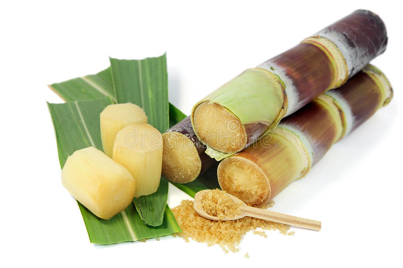 Sugarcane with leaves and granulated brown sugar on white background. royalty free stock photo