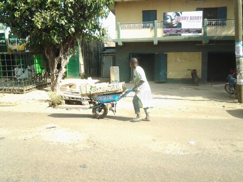Sugarcane man royalty free stock photo