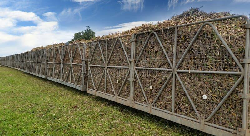 Sugarcane train royalty free stock photos