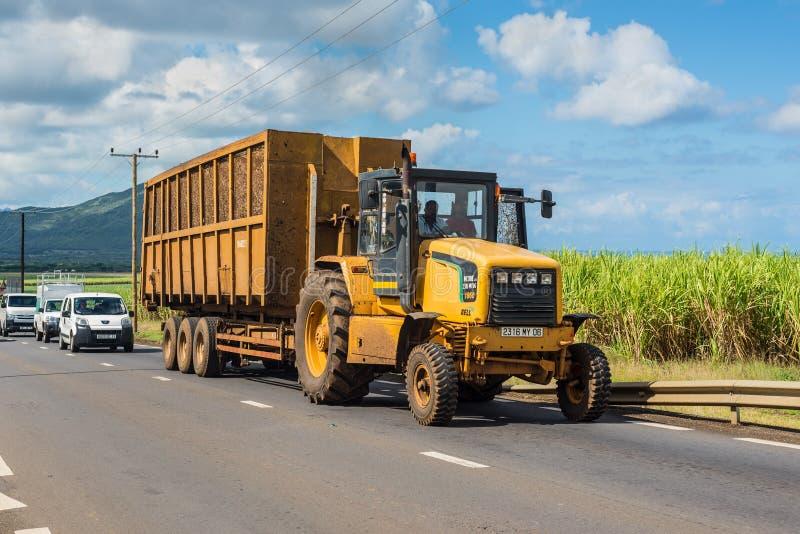 Sugarcane transportation - Mauritius stock photography