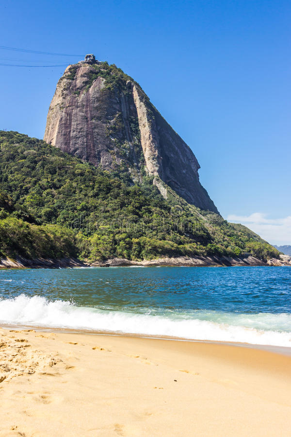 Sugarloaf mountain. In Rio de Janeiro as seen from Praia Vermelha royalty free stock photos