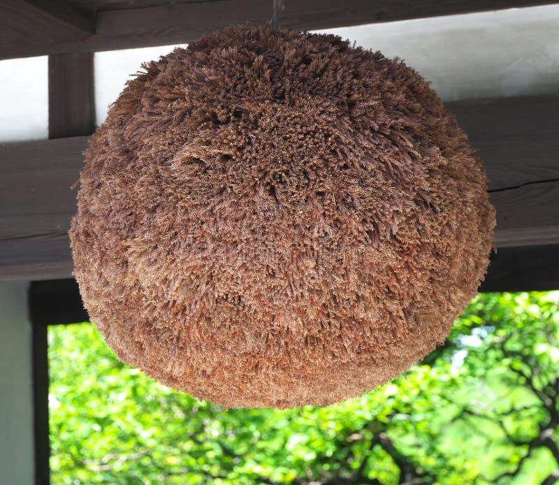 Sugidama或由柳杉小树枝做的球  库存照片
