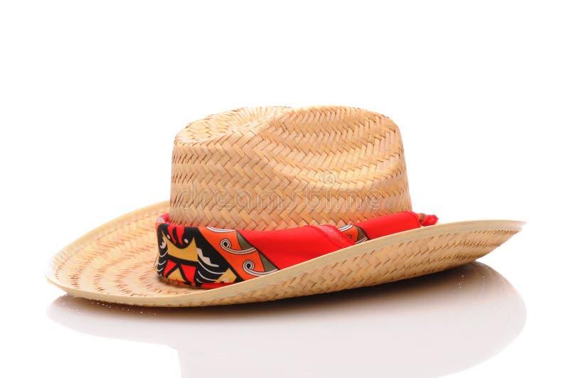 sugrör för cowboyhatt arkivfoto